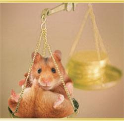hamster_auf_waage